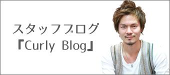 カーリーブログへのリンク